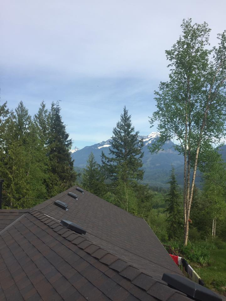 Professional roofing in Langley